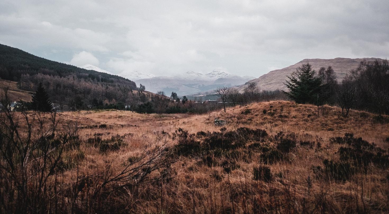 Schottland-83